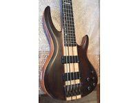 ESP Active 5 String bass inc hardcase