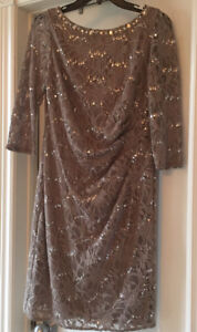 Gorgeous new with tags elegant party dress. Size 10 petite.