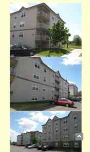 Appartement a louer/apartment to rent