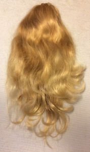 Blonde Fall/Hair Extension