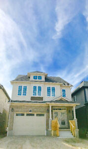 Brand New Beautiful 4 Bed, Upscale Location, Unlimited Upgrades