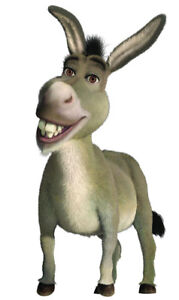 LOOKING  FOR  A  DONKEY