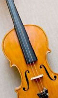 Adult Violin and Fiddle Lessons