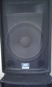 Two pro Speakers Peavey TLS-5X + two stands
