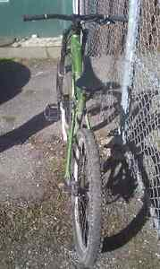 2006 Devinci Wilson with lots of upgrades Prince George British Columbia image 3