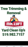 Tree Trimming, Pruning, Removal & Stump Grinding