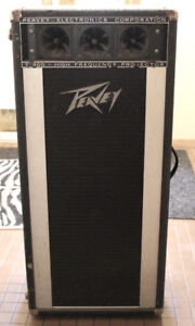 Pair Of Compact Peavey Speaker Cabinets