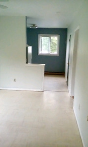 Bright 2 bedroom apt close to Superstore and downtown Newcastle