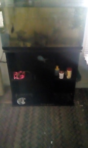35 gallon fish tank with black storage stand