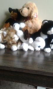 Selling stuffed animals for $20