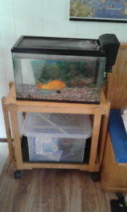 Fish tank and equipment with one FISH and stand