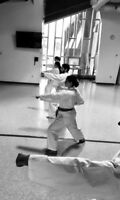 Adult Karate Program - Newcomers ALWAYS welcome!