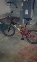 2 GT BMX
