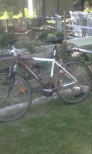 Mountain bike for sale $70.00 obo