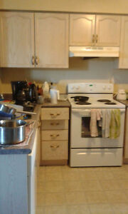 Entire 4 Bedroom Student House for Rent 8 Month or More Kitchener / Waterloo Kitchener Area image 7
