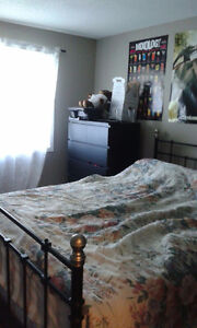 Entire 4 Bedroom Student House for Rent 8 Month or More Kitchener / Waterloo Kitchener Area image 9