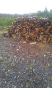 Brigus junction. Firewood just cut for sale.