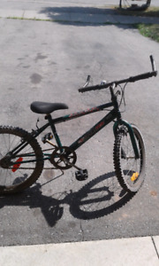 Kids single speed mountain bike.