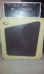 PEAVEY CLASSIC SERIES 120W VALVE AMP SPKR CAB & PRO FEX II Newcastle Newcastle Area Preview