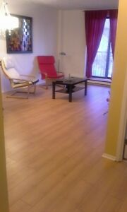 Downtown Hull- 1 bedroom furnished/meublé
