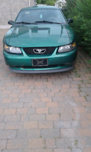 Limited Time Offer Ford Mustang Anniversary Edition 1999