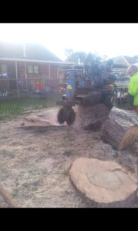 Pro cutt tree servie Gawler East Gawler Area Preview