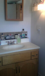seeking roommate to rent bedroom Belleville Belleville Area image 3