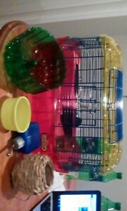 HAMSTER CAGES X2 AND PLAYPEN