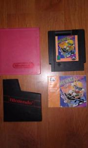 Rare NES game