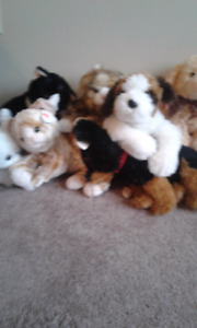 Selling ty stuff four dogs and three cats for $20