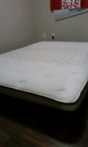 Brand new bed 150$