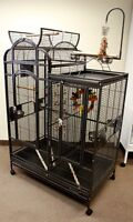 Deluxe Complex Parrot Cage with Open Top and Play