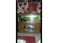 4ft fish tank stand - beautiful unit with shelf and cupboards