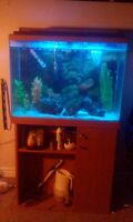 35 gallon fish tank all accesorries  salt water ready