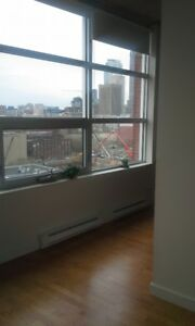Downtown, Square Victoria metro, 3½ fully furnished condo