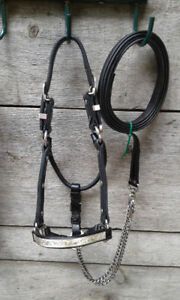 Leather and silver show halter (weanling/pony)