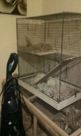 Rat cage in good condition collection only please