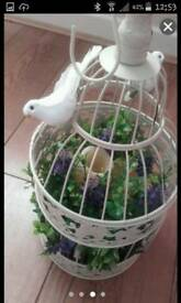Pretty medium bird cadge