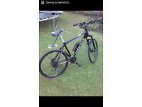 Hybrid ridgeback MX5 26inc Bike