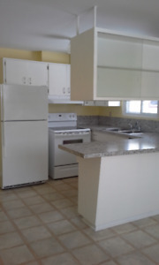 Large 3 Bedroom Current River Apartment in smoke free bldg