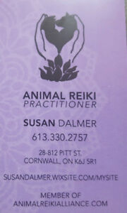 Reiki Healing for our Animal Companions