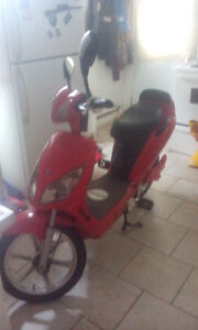 Red eco-ped scooter for sale