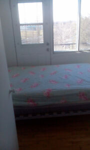 3 1/2 for rent fully furnished NDG loyola campus pet friendly