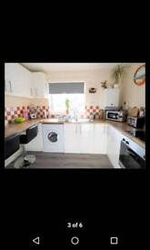 1 bedroom flat, private landlord and no fees!