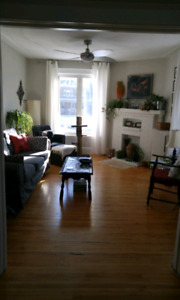 GOT A GREAT APARTMENT, NEED A GREAT ROOMMATE