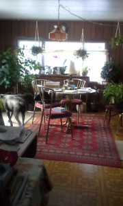 Brass and Glass table and 4 chairs with the red rug