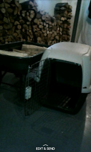 Medium-large size dog kennel . Asking 50$