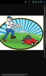 Lawn mowing and garden maintenance 7days a week Hampton Park Casey Area Preview