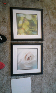Pictures  $5 for both