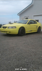 2003 Ford Mustang coupe Coupe (2 door)